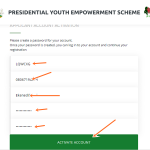 Register P-YES Requirement Account & Login www.p-yes.gov.ng