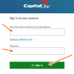 Steps To Set Up Capital One Direct Debit Monthly Details