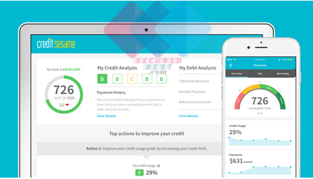 Guide To Check Credit Score For Business Free, Bank of America, Capital One